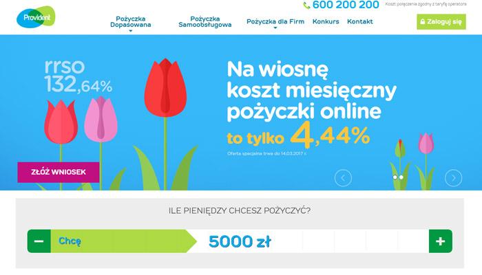 pożyczka pozabankowa 5000 zł